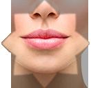Facial Libs